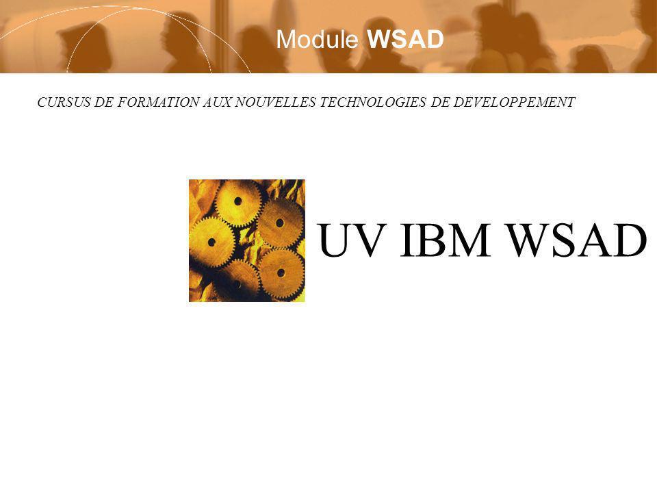 CURSUS DE FORMATION AUX NOUVELLES TECHNOLOGIES DE DEVELOPPEMENT UV IBM WSAD Module WSAD