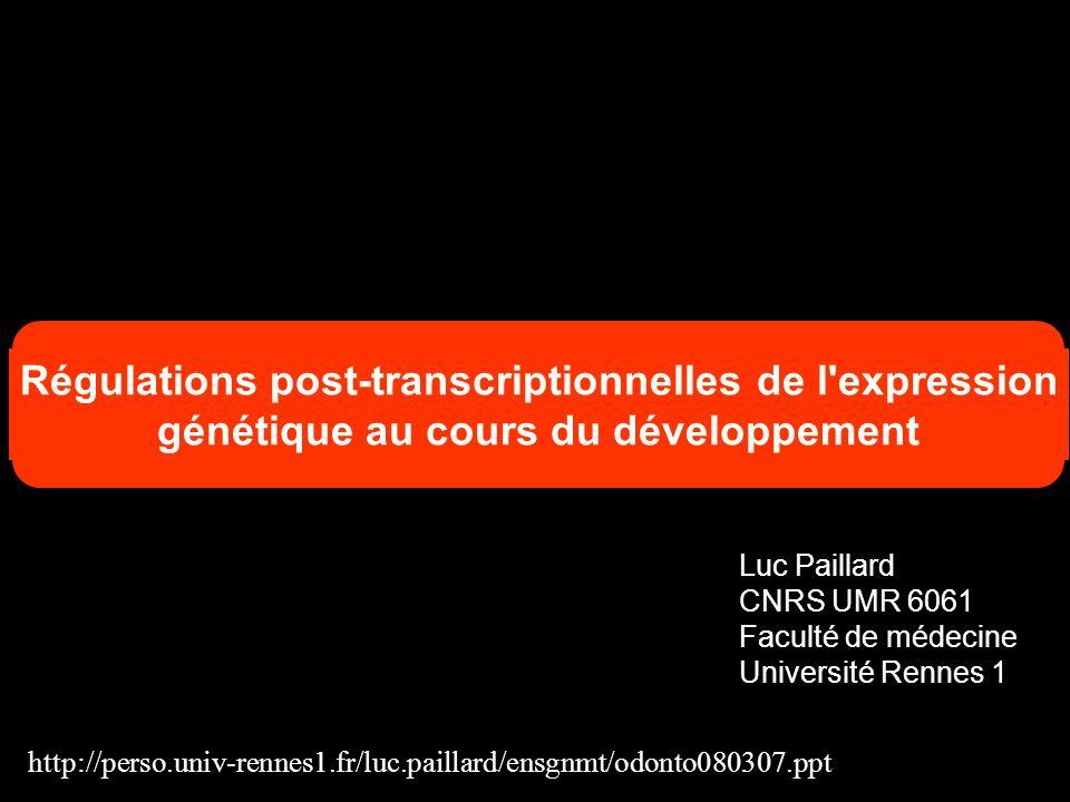 Fonction de la polyadénylation contrôlée par la CPEB Linjection danticorps anti CPEB bloque la maturation ovocytaire Identification de certains ARNm dont la polyadénylation est nécessaire à la maturation (c-mos…)