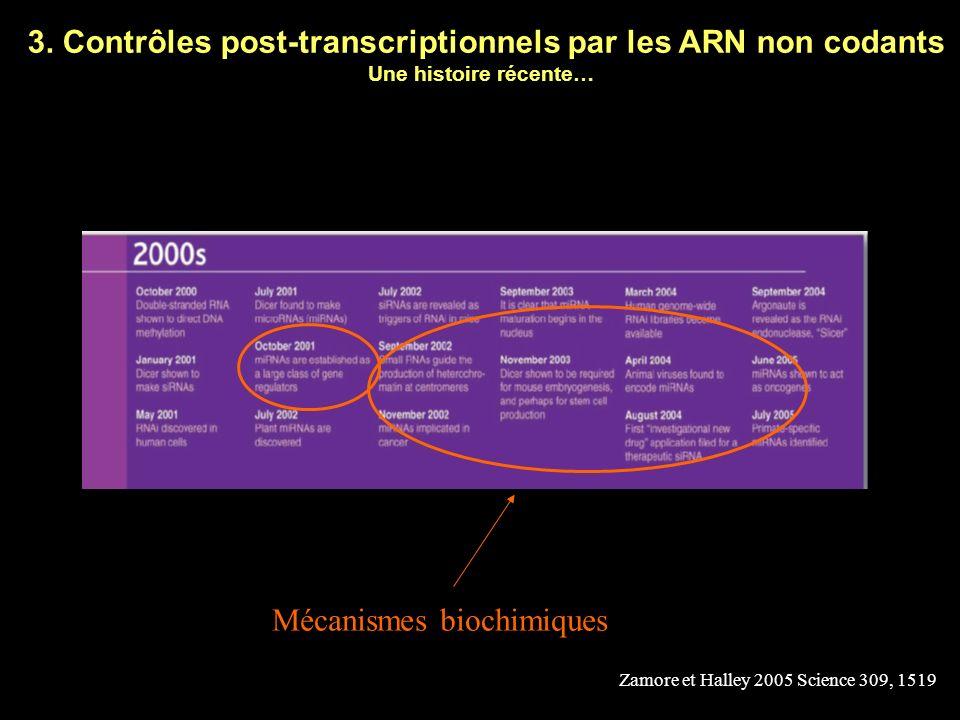 3. Contrôles post-transcriptionnels par les ARN non codants Une histoire récente… Zamore et Halley 2005 Science 309, 1519 miRNA RNAi Prix Nobel oct 20