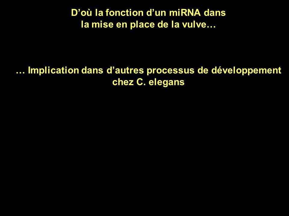 Recherche dun ARNm cible de mir-61 Fonction de la protéine codée par cet ARNm : faire « devenir une cellule comme P6.p » Dans lembryon normal : mir-61 est présent dans P5.p et P7.p Il empêche lexpression de cet ARN dans P5.p et P7.p P5.p et P7.p deviennent « comme P5.p et P7.p » Si on exprime mir-61 dans P6.p Il empêche lexpression de cet ARNm dans P6.p aussi P6.p devient « comme P5.p et P7.p » ARNm codant la protéine vav-1 Yoo et Greenwald 2005 Science 310, 1330