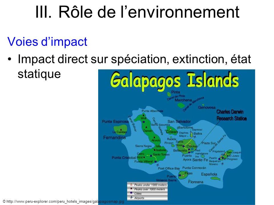 III. Rôle de lenvironnement Voies dimpact Impact direct sur spéciation, extinction, état statique © http://www.peru-explorer.com/peru_hotels_images/ga