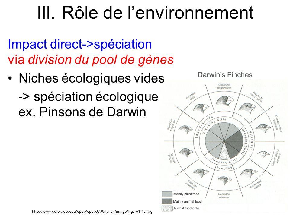 Impact direct->spéciation via division du pool de gènes Niches écologiques vides -> spéciation écologique ex. Pinsons de Darwin III. Rôle de lenvironn