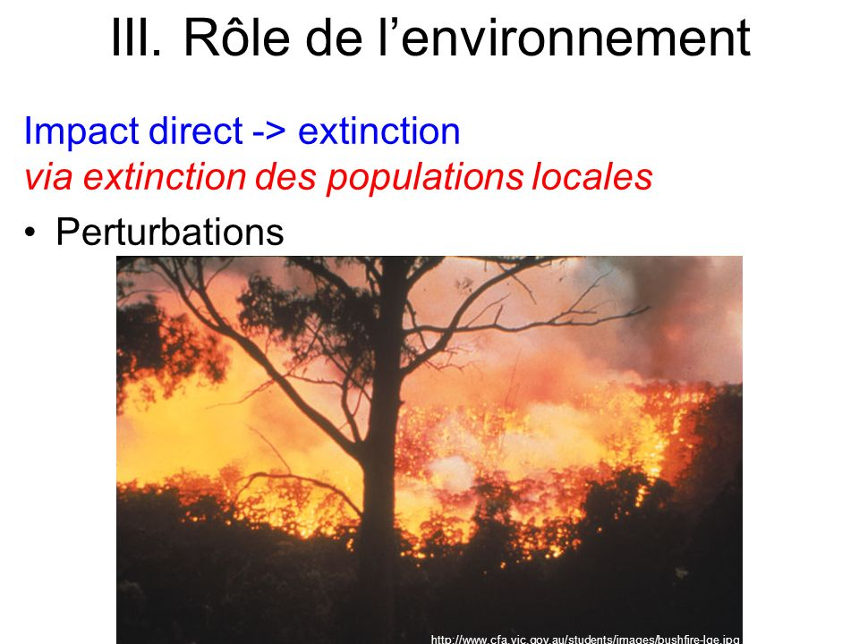Impact direct -> extinction via extinction des populations locales Perturbations III. Rôle de lenvironnement http://www.cfa.vic.gov.au/students/images