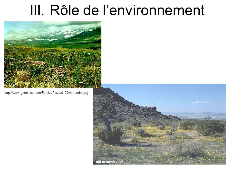 http://www.geocities.com/Eureka/Plaza/6108/mt-tundra.jpg III. Rôle de lenvironnement