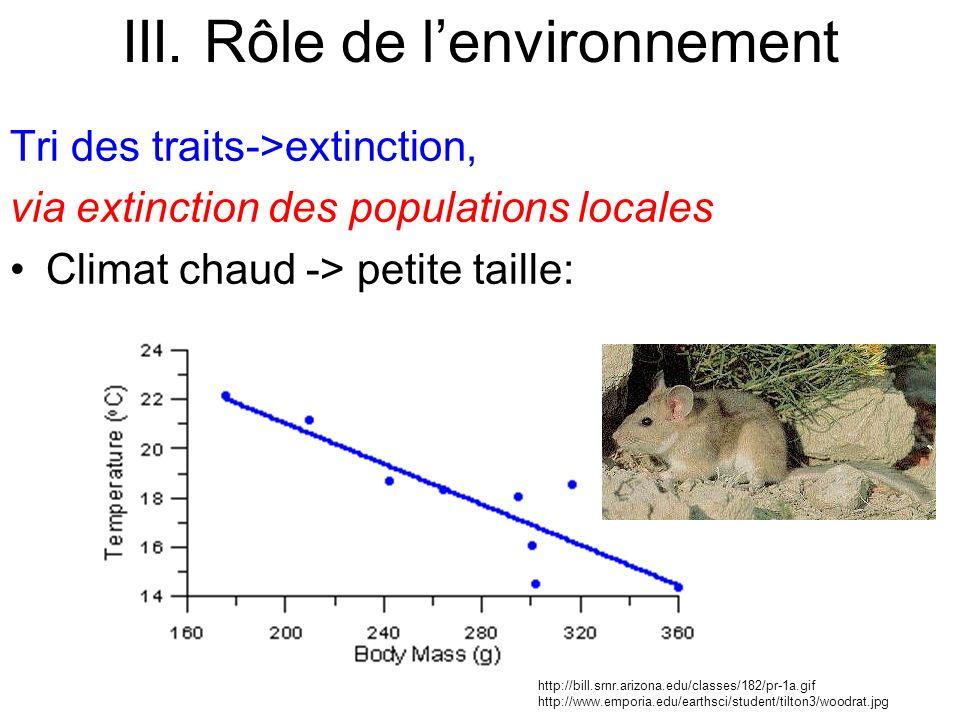 Tri des traits->extinction, via extinction des populations locales Climat chaud -> petite taille: III. Rôle de lenvironnement http://bill.srnr.arizona