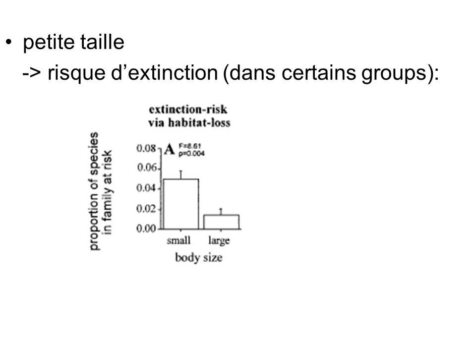 petite taille -> risque dextinction (dans certains groups):