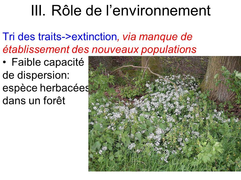 Tri des traits->extinction, via manque de établissement des nouveaux populations Faible capacité de dispersion: espèce herbacées dans un forêt III. Rô