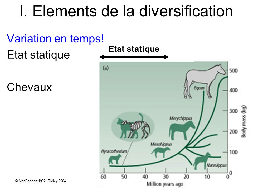 I. Elements de la diversification © MacFadden 1992; Ridley 2004 Etat statique Variation en temps! Etat statique Chevaux