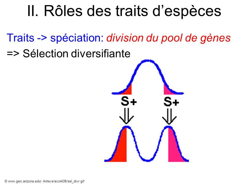 II. Rôles des traits despèces Traits -> spéciation: division du pool de gènes => Sélection diversifiante © www.geo.arizona.edu/ Antevs/ecol438/sel_div