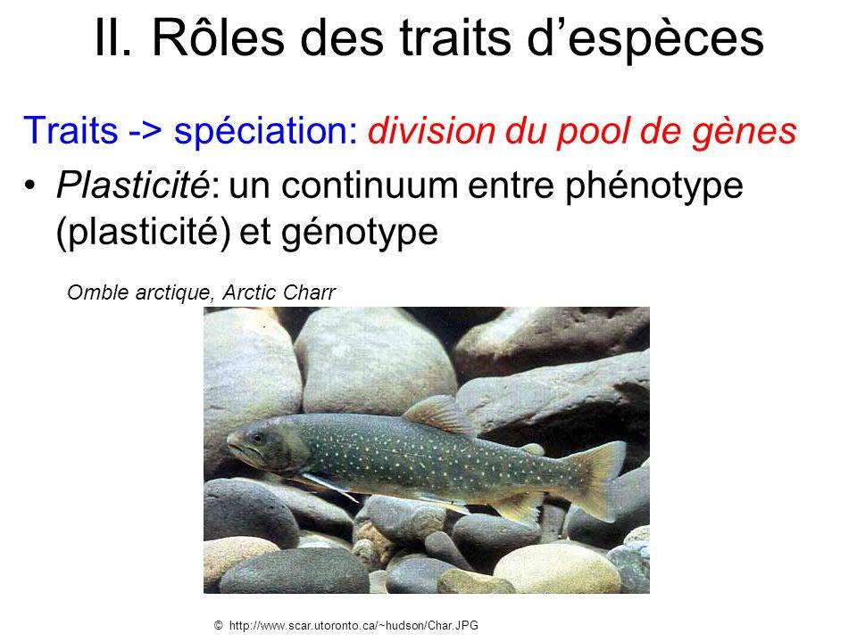II. Rôles des traits despèces Traits -> spéciation: division du pool de gènes Plasticité: un continuum entre phénotype (plasticité) et génotype © http
