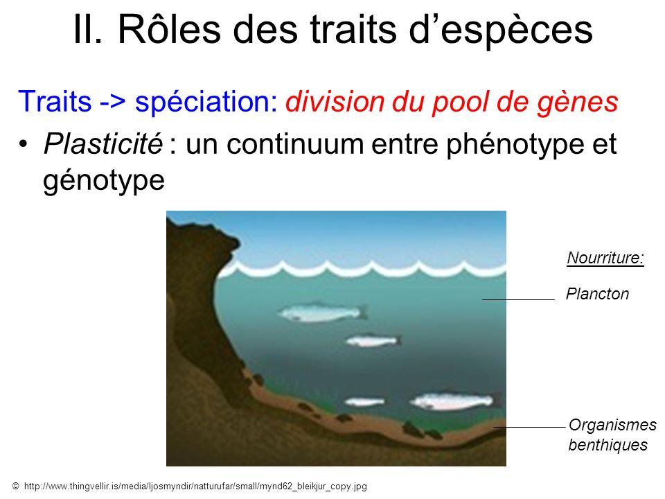 II. Rôles des traits despèces Traits -> spéciation: division du pool de gènes Plasticité : un continuum entre phénotype et génotype © http://www.thing