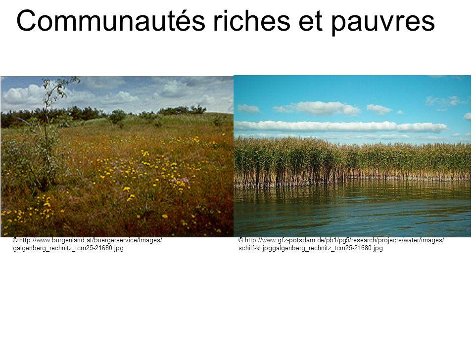 Communautés riches et pauvres © http://www.burgenland.at/buergerservice/Images/ galgenberg_rechnitz_tcm25-21680.jpg © http://www.gfz-potsdam.de/pb1/pg