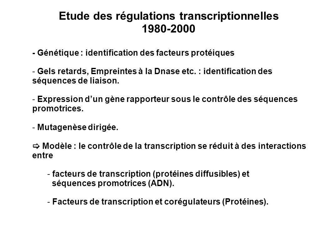 Etude des régulations transcriptionnelles 1980-2000 - Génétique : identification des facteurs protéiques - Gels retards, Empreintes à la Dnase etc. :