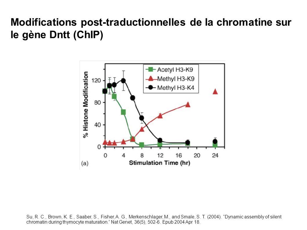 Modifications post-traductionnelles de la chromatine sur le gène Dntt (ChIP) Su, R. C., Brown, K. E., Saaber, S., Fisher, A. G., Merkenschlager, M., a
