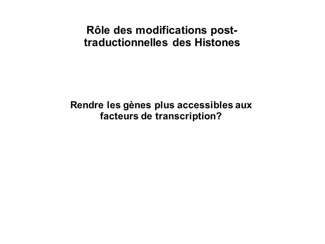 Rôle des modifications post- traductionnelles des Histones Rendre les gènes plus accessibles aux facteurs de transcription?
