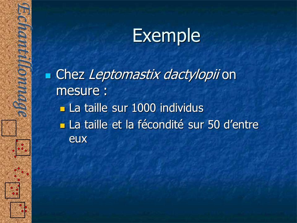 Exemple Chez Leptomastix dactylopii on mesure : Chez Leptomastix dactylopii on mesure : La taille sur 1000 individus La taille sur 1000 individus La t
