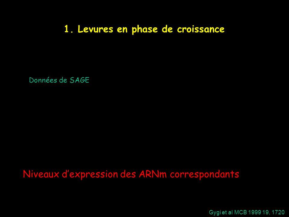 1. Levures en phase de croissance Gygi et al MCB 1999 19, 1720 Données de SAGE Niveaux dexpression des ARNm correspondants