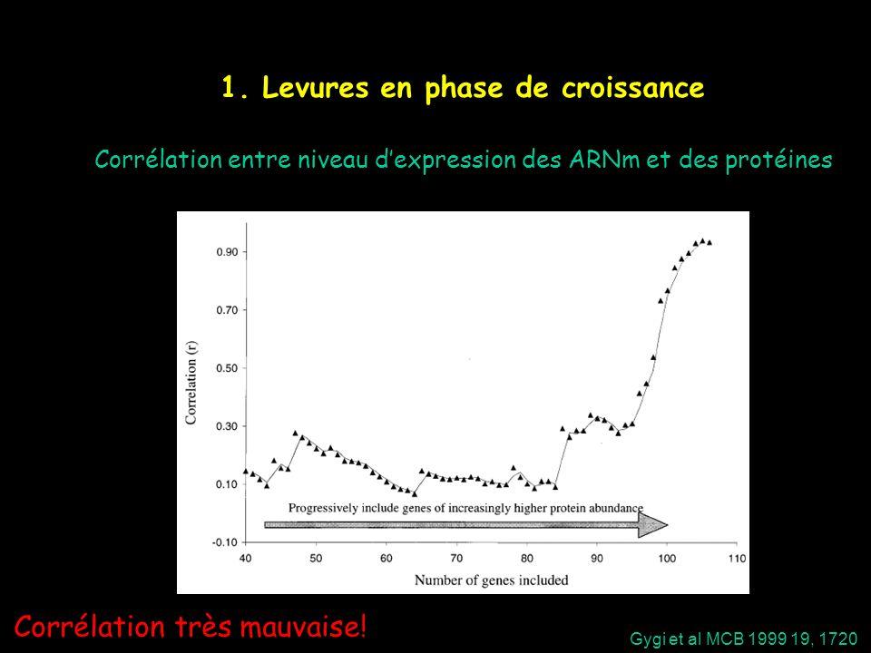 1. Levures en phase de croissance Gygi et al MCB 1999 19, 1720 Corrélation entre niveau dexpression des ARNm et des protéines Corrélation très mauvais