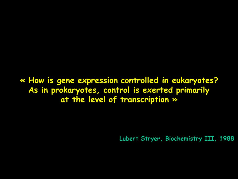 « How is gene expression controlled in eukaryotes.