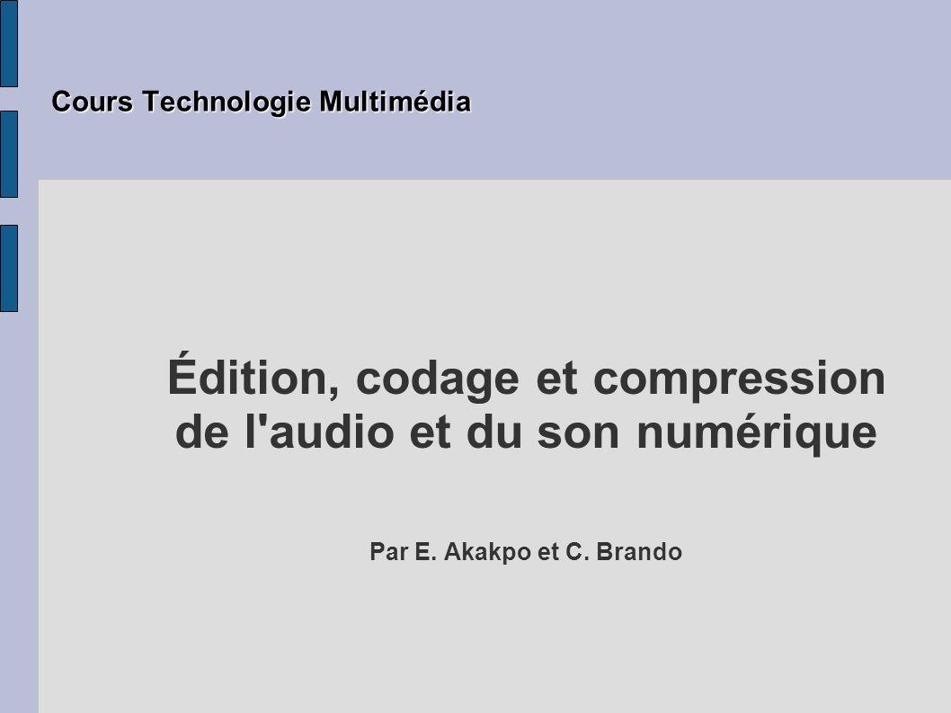 Plan La nature La numérisation ou codage La compression et formats d audio La famille MPEG/audio Autres formats audio L édition 2