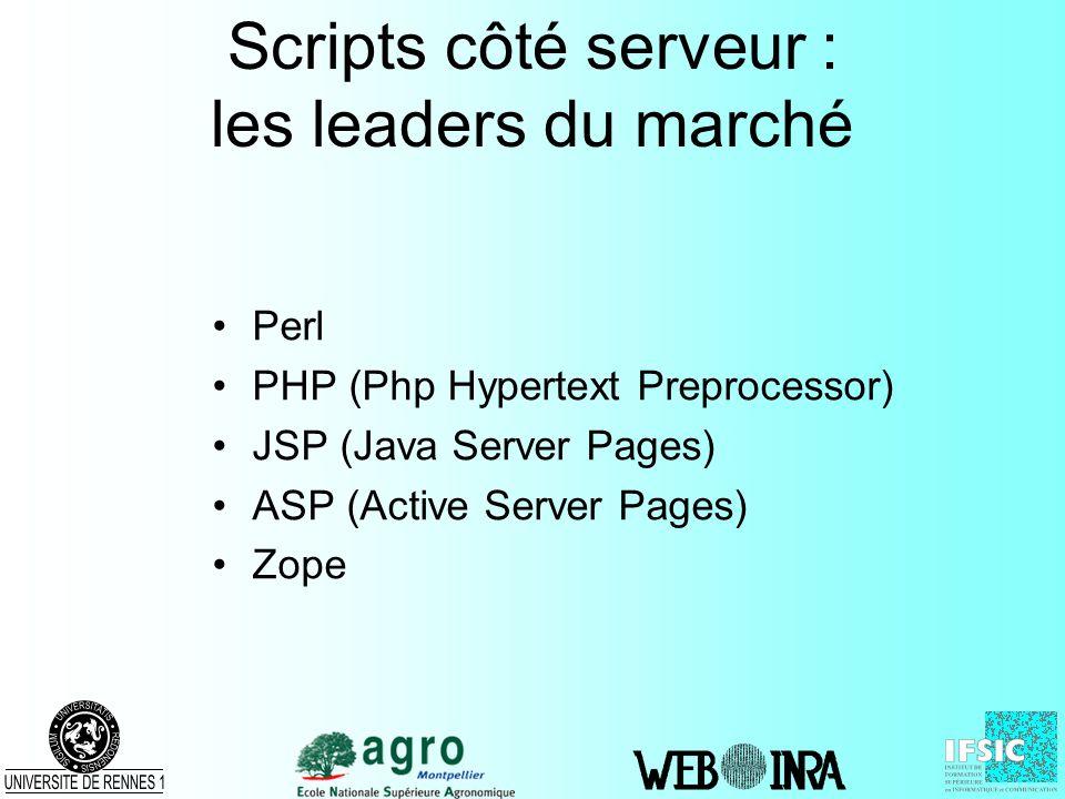 Scripts côté serveur : les leaders du marché Perl PHP (Php Hypertext Preprocessor) JSP (Java Server Pages) ASP (Active Server Pages) Zope