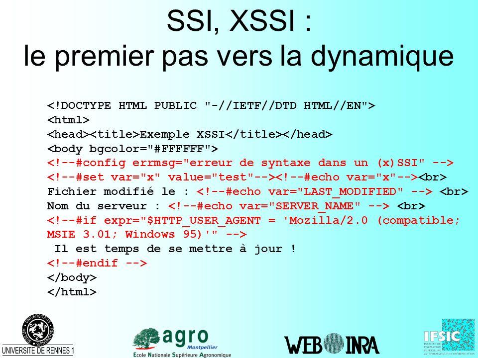 CGI : Common Gateway Interface Un standard pour linterface entre applications et serveurs dinformations Permet de passer des paramètres aux requêtes –dans lURL avec la méthode GET http://serv.dom.org/cgi-bin/script?arg1=val1&arg2=val2 –comme des données avec la méthode POST Exécution dun programme sur le serveur –Les informations renvoyées au client sont statiques –Des requêtes successives et ladéquation des réponses en fonction des paramètres permettent le dynamisme
