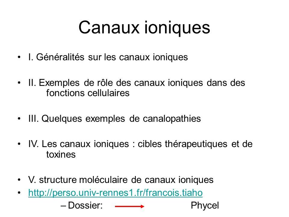 Canaux ioniques I. Généralités sur les canaux ioniques II. Exemples de rôle des canaux ioniques dans des fonctions cellulaires III. Quelques exemples