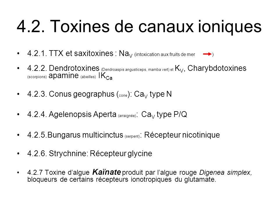 4.2. Toxines de canaux ioniques 4.2.1. TTX et saxitoxines : Na V (intoxication aux fruits de mer) 4.2.2. Dendrotoxines (Dendroaspis angusticeps, mamba