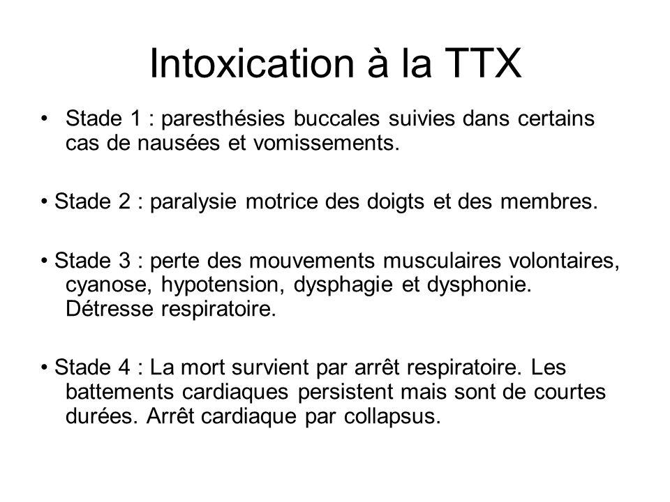Intoxication à la TTX Stade 1 : paresthésies buccales suivies dans certains cas de nausées et vomissements. Stade 2 : paralysie motrice des doigts et