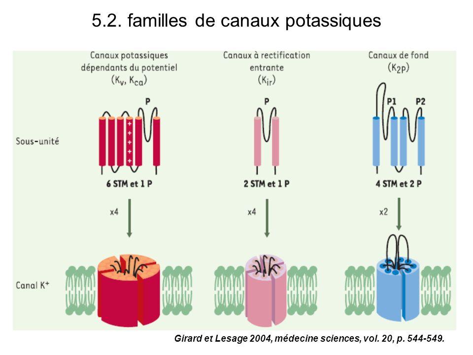 5.2. familles de canaux potassiques Girard et Lesage 2004, médecine sciences, vol. 20, p. 544-549.