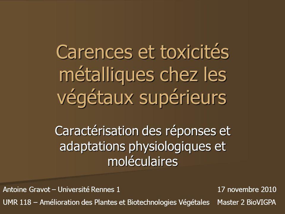 Carences et toxicités métalliques chez les végétaux supérieurs Caractérisation des réponses et adaptations physiologiques et moléculaires Antoine Grav