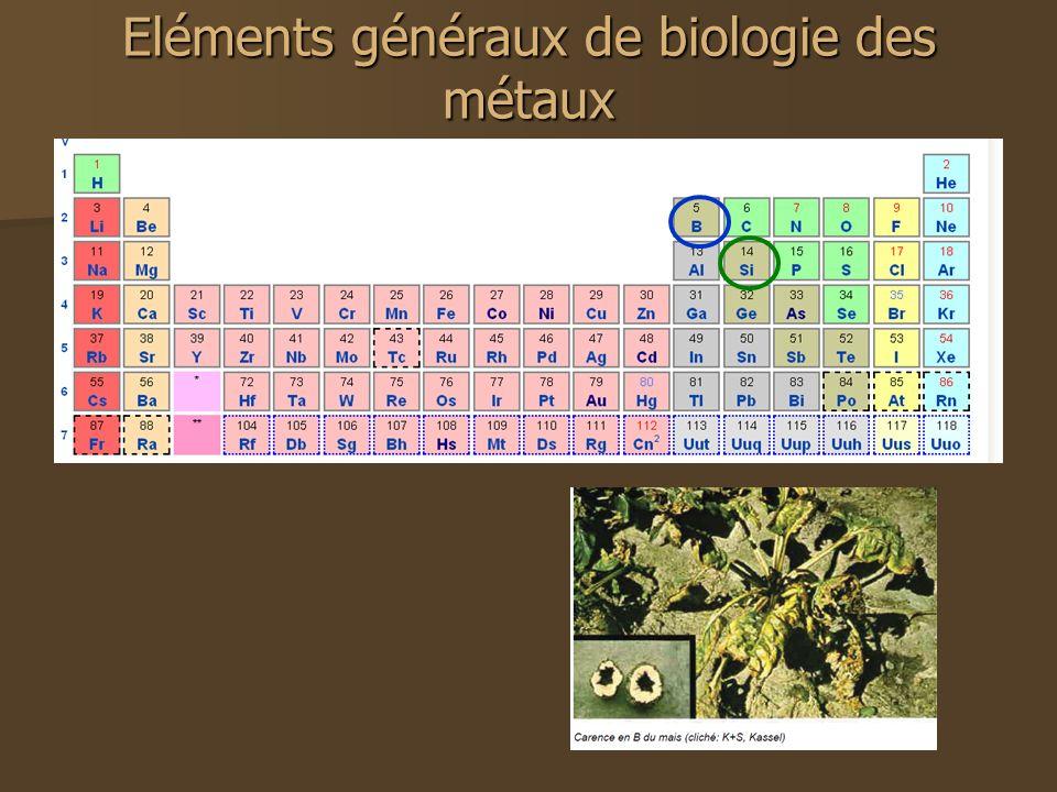 Eléments généraux de biologie des métaux