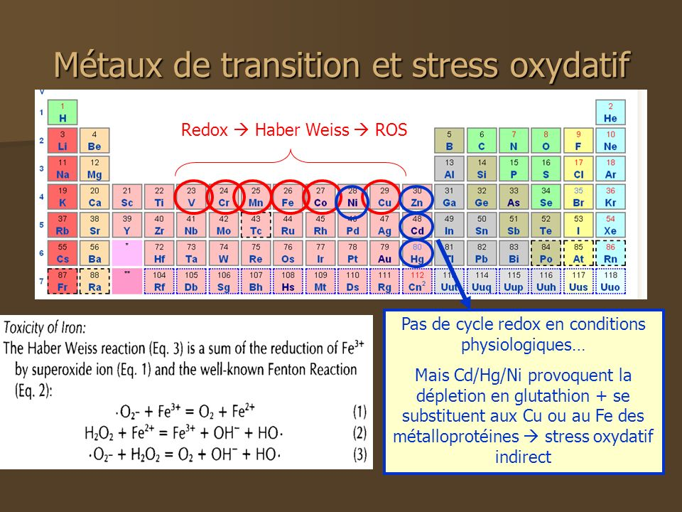 Métaux de transition et stress oxydatif Redox Haber Weiss ROS Pas de cycle redox en conditions physiologiques… Mais Cd/Hg/Ni provoquent la dépletion en glutathion + se substituent aux Cu ou au Fe des métalloprotéines stress oxydatif indirect