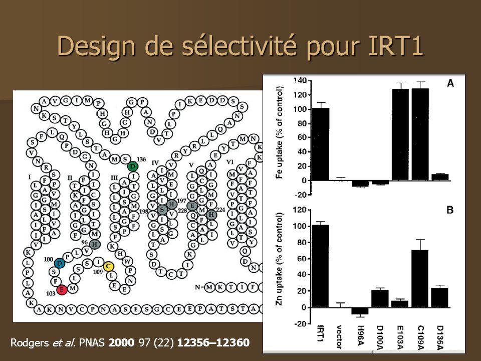 Design de sélectivité pour IRT1 Rodgers et al. PNAS 2000 97 (22) 12356–12360