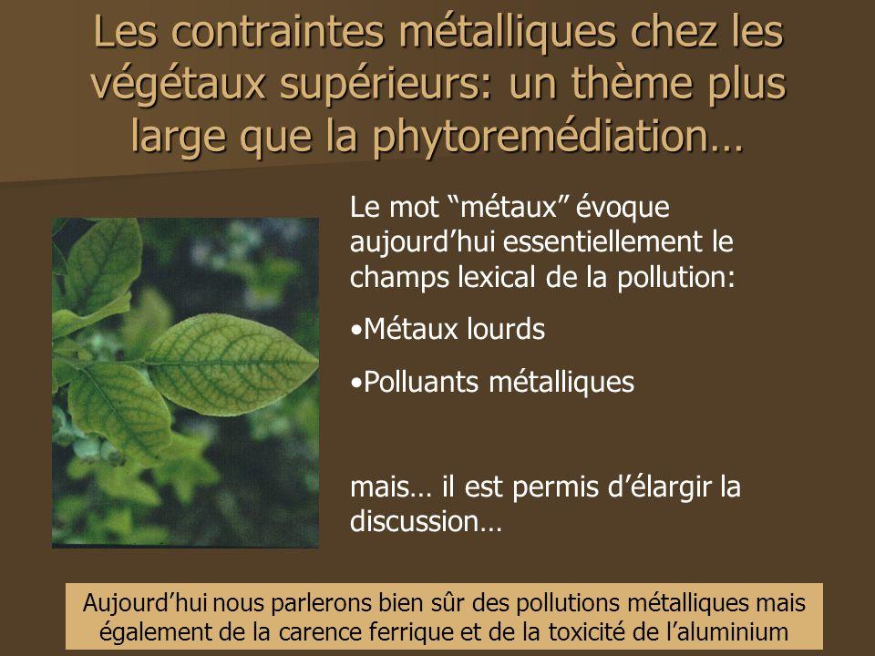 Les contraintes métalliques chez les végétaux supérieurs: un thème plus large que la phytoremédiation… Le mot métaux évoque aujourdhui essentiellement