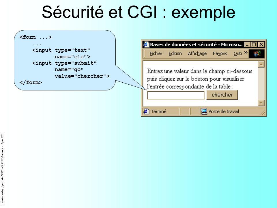 Journées pédagogiques de l'IFSIC - ENSSAT (Lannion) - 17 juin 2003 Sécurité et CGI : exemple...
