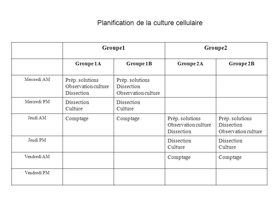 Groupe1Groupe2 Groupe 1AGroupe 1BGroupe 2AGroupe 2B Mercredi AM Prép. solutions Observation culture Dissection Prép. solutions Dissection Observation