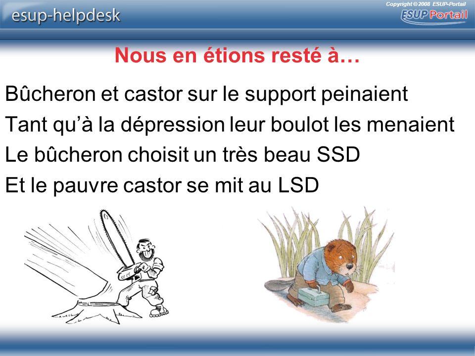Copyright © 2008 ESUP-Portail Nous en étions resté à… Bûcheron et castor sur le support peinaient Tant quà la dépression leur boulot les menaient Le bûcheron choisit un très beau SSD Et le pauvre castor se mit au LSD