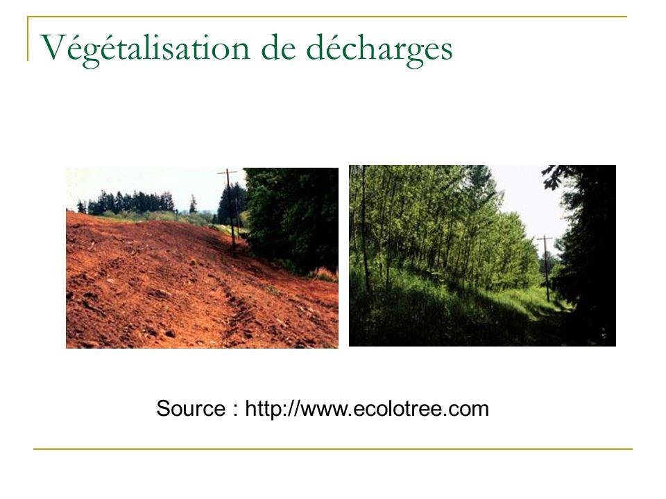 Champs dapplication Préventif : Végétalisation de décharges Traitement des effluents industriels et de stations dépuration Zones tampons Curatif Accid