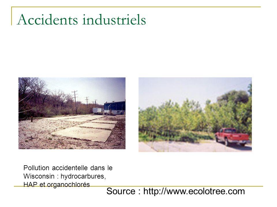 Stations dépuration Traitement en aval : irrigation de zones humides artificielles ou de taillis à rotation courte par des effluents de station (suède