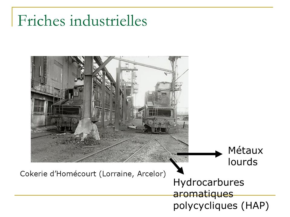 Accidents industriels Pollution accidentelle dans le Wisconsin : hydrocarbures, HAP et organochlorés Source : http://www.ecolotree.com