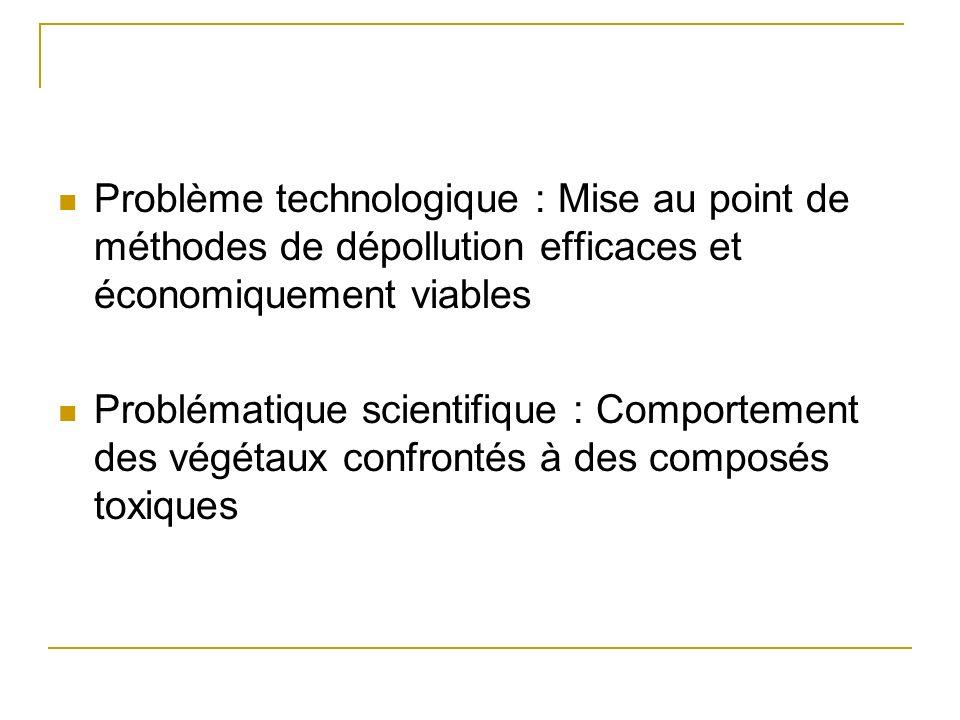 Phytoremédiation Une « technologie verte » pour la dépollution Antoine Gravot Cours M1 Biotechnologies Végétales Septembre 2007