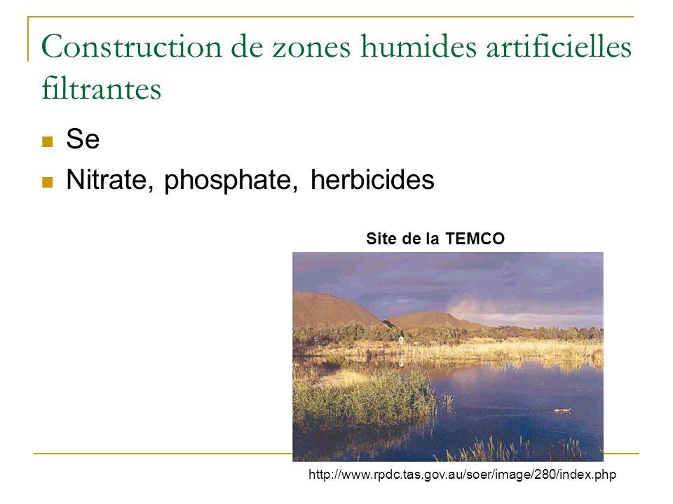 Filtration de larsenic par des fougères Elles et al. 2005 Water Research Coût : adapté pour des faibles volumes fortement contaminés