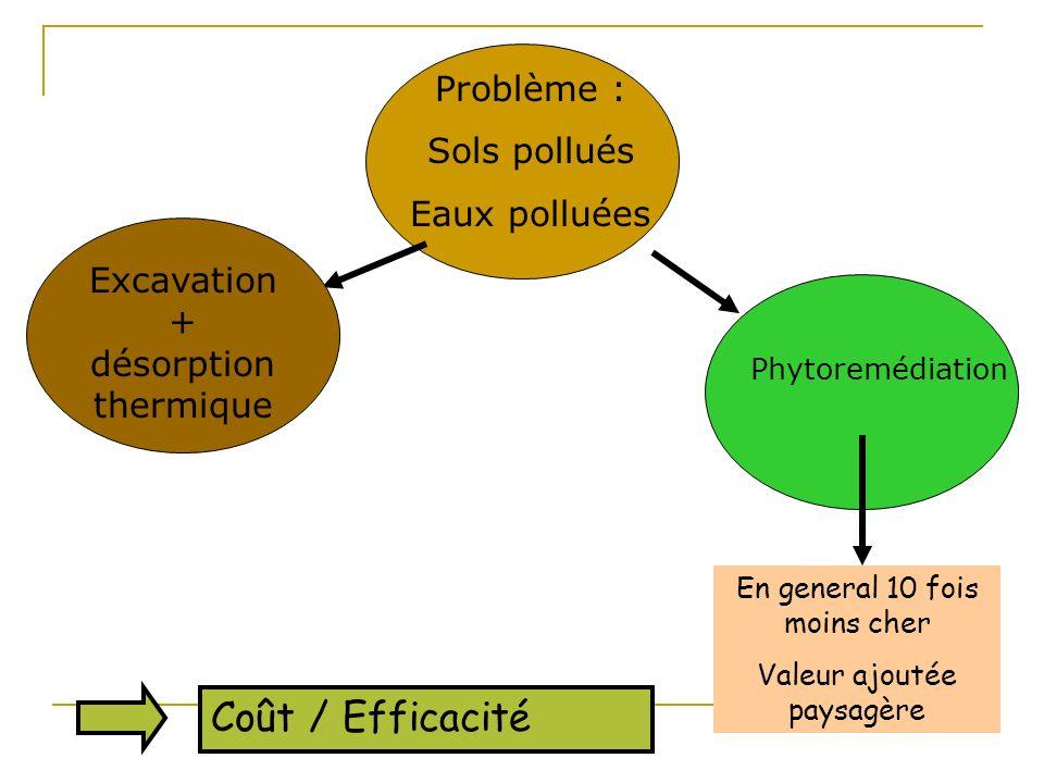 Problème : Sols pollués Eaux polluées Excavation + désorption thermique