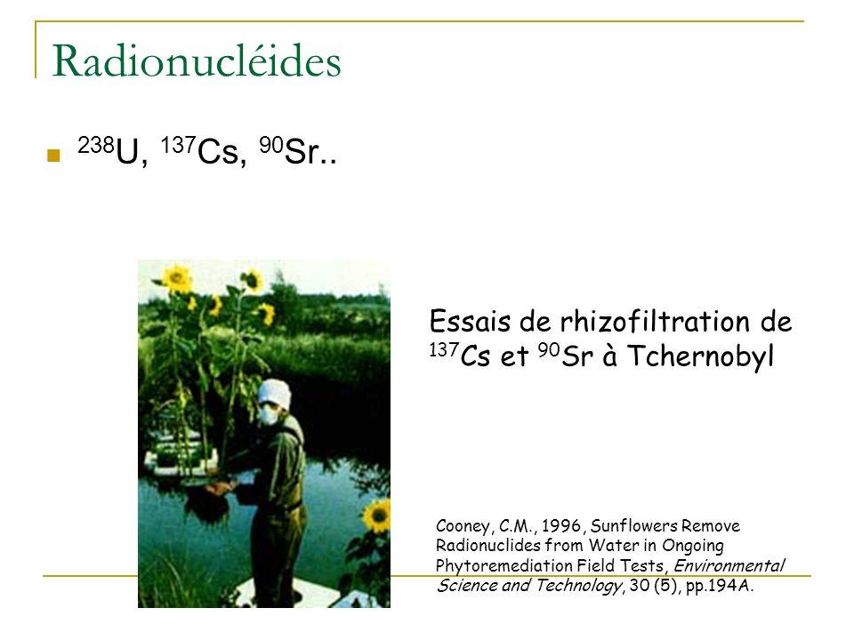 Nickel : Rôle de lhistidine dans lhypertolérance Krämer et al. (1996) Nature 379, 635 - 638