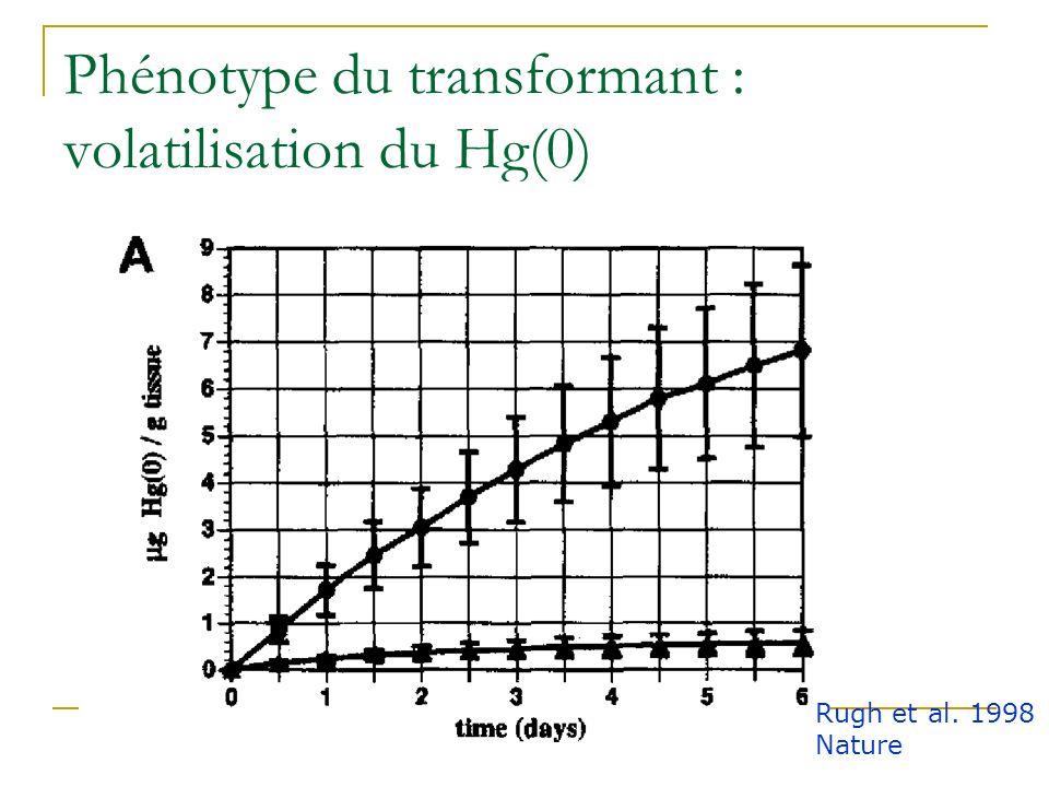 Criblage des cals résistant au Hg(II) Rugh et al. 1998 Nature Biotechnology