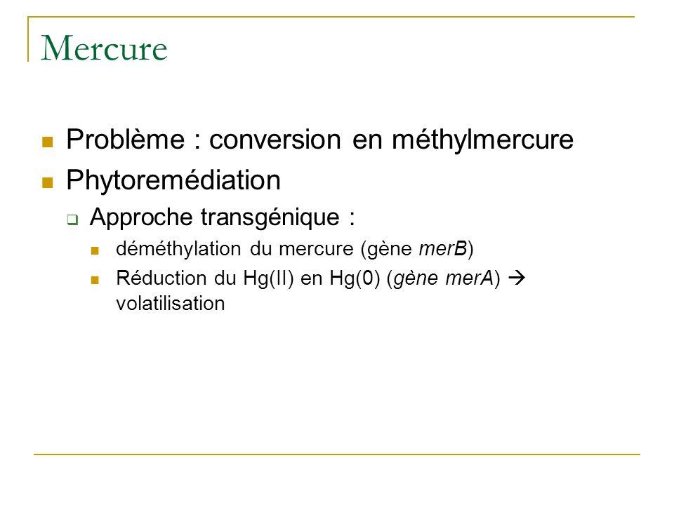 Phénotype du transformant : volatilisation du Hg(0) Rugh et al. 1998 Nature
