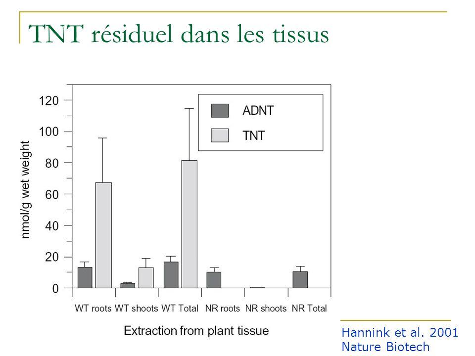 Phénotype des transformants TNT 0.05 mMTNT 0.1 mM témoin Hannink et al. 2001 Nature Biotech