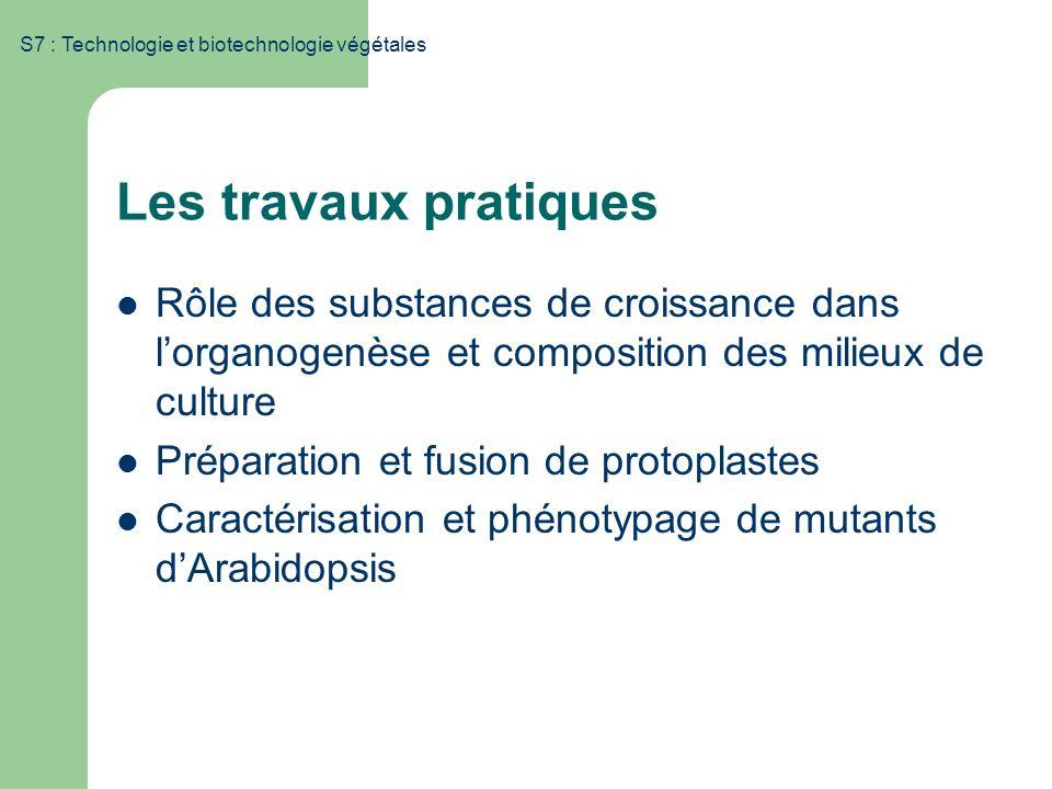S7 : Technologie et biotechnologie végétales Les travaux pratiques Rôle des substances de croissance dans lorganogenèse et composition des milieux de