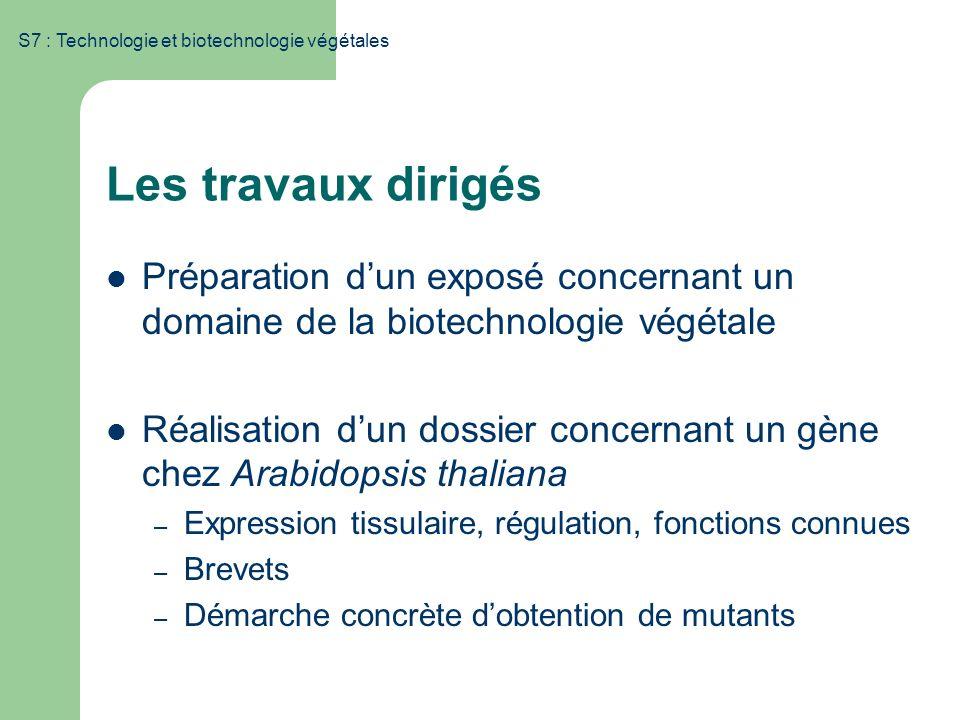 S7 : Technologie et biotechnologie végétales Les travaux dirigés Préparation dun exposé concernant un domaine de la biotechnologie végétale Réalisatio